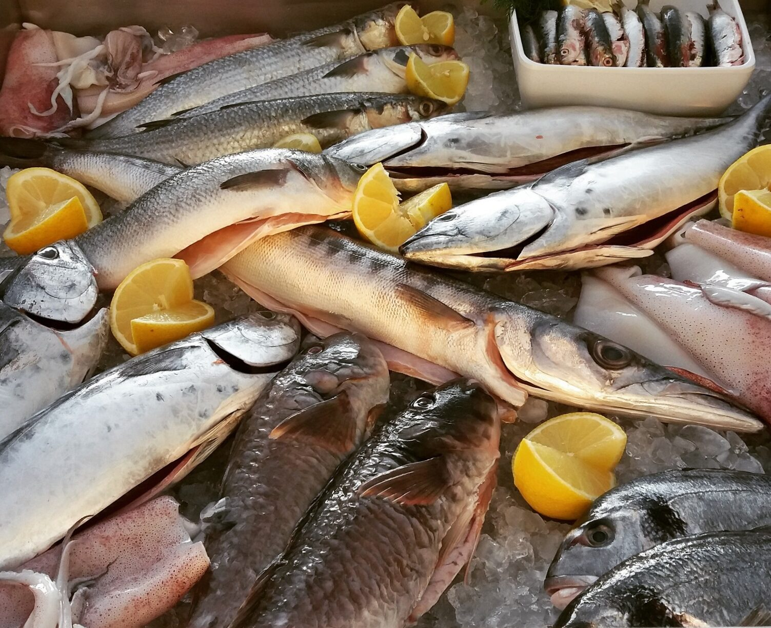 fresh fish restaurant naxos greece dinner lunch breakfast flisvos sport club