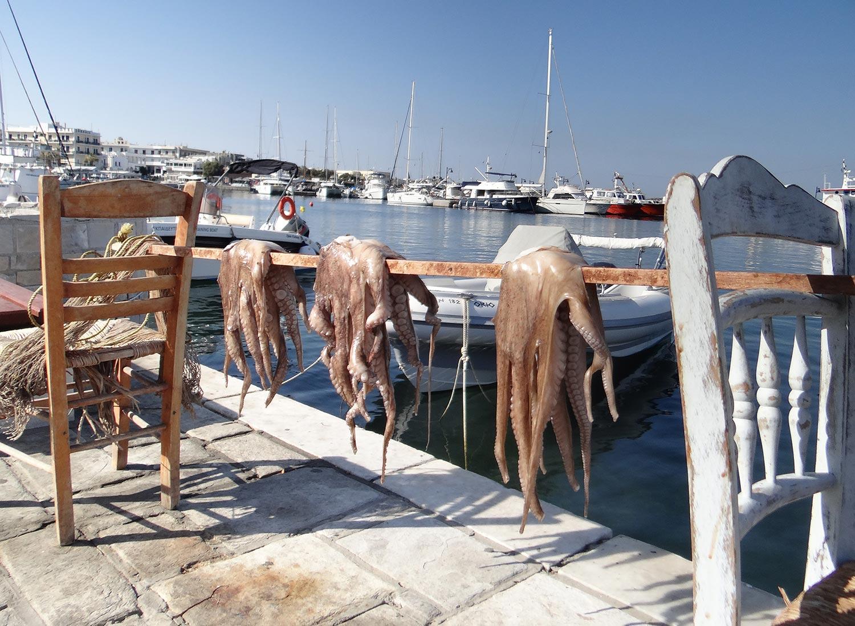 fresh fish dinner restaurant beach cafe flisvos naxos